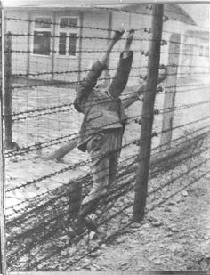 Mauthausen, Austria, A prisoner who committed suicide by throwing himself onto an electrified fence.