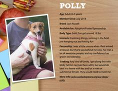 Polly want a cracker