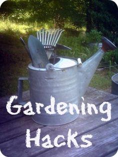 Gardening Hacks: Some great tips!