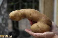 Women love potatoes :D -Funny adult jokes and pictures