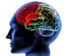 10 habitos que dañan tu cerebro  http://www.mamanatural.com.mx/2013/01/10-habitos-que-tal-vez-tengas-pero-que-danan-tu-cerebro/#