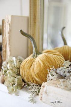 Autumn, Velvet pumpkins