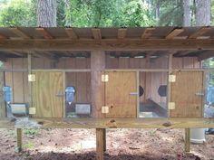 rabbit hutch from Backyard Chickens