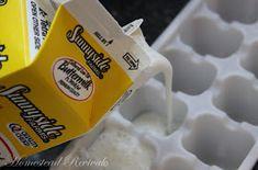 Homestead Revival: Freezing Buttermilk