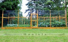 Deer fence on pinterest vegetable garden fences wire fence and deer resistant garden - Deer proof vegetable garden ideas ...