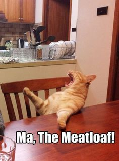 the meatloaf!