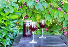 Blackberry Cordial 2