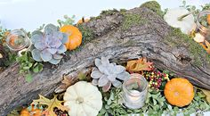 Let nature inspire your fall centerpiece, especially for an outdoor table. We love how Kristin of Bliss At Home used succulents and mini-pumpkins on a mossy piece of found wood. (Succulents come in many colors and are so easy to grow, too.) Click through to see more of her fall decorating ideas. || @gwhkristy