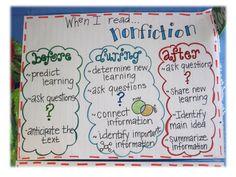 questioning nonfiction