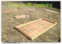 Garden it on pinterest 89 pins - Lasagna gardening in containers ...