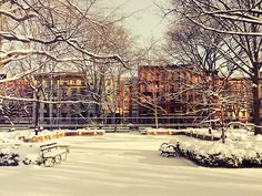 Winter in Tompkins Square Park. East Village, New York City.    The clouds squeeze the last bit of light from the sun onto the city below.    It falls over trees and buildings: liquid promise spreading onto a landscape de-saturated by winter's icy breath.    In the wake of winter's gasping utterances, the sun uncovers the world that hides behind boisterous trees in summer.    And a smile spreads across the city's face for a moment: warm and golden hope spreading itself over the remains