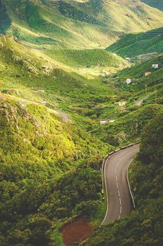 ~Canary Islands, Spain~