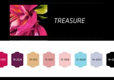 Nilit S/S 2014, treassure trend color