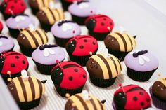 butterflies, bugs, birthdays, food, mini cupcakes