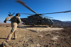 A crew member runs to a Royal Air Force Merlin HC3 helicopter of 78 Squadron based at RAF Benson, after landing in the Californian Desert during pre-Afghanistan training in the USA.