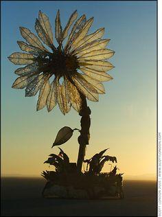 Burning Man 2005 - Miracle Grow - Photo by Scott London