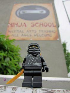 LEGO Collectible Minifigures Series 1 : Ninja