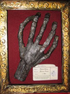 Hand of Glory by whenindoubtsew