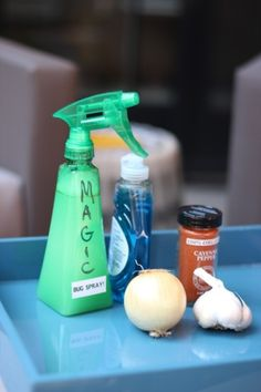 "All-Natural ""Magic"" Bug Spray! - spray around your yard to get rid of bees, mosquitoes, flies, and other insects. Made from onion, garlic, water, cayenne pepper, and dish soap."
