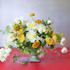 10492582_822144661130701_5682624349100493945_n tulipina flower power, art végétal