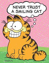 *Smiles* cat