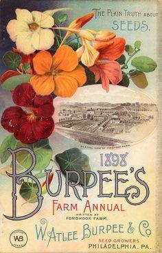 W. Atlee Burpee  Company Seed Co., 1898