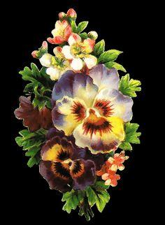 ZOOM DISEÑO Y FOTOGRAFIA: 31 flores vintage, para scrap, flowers,png