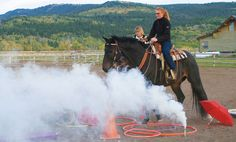 smoke bombs and fireworks work well. Smoke - an exceptional tool - teaches your horse to trust you enough to penetrate a wall it can't see through.