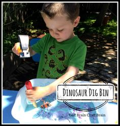 Dinosaur Dig Bin Left Brain Craft Brain