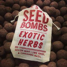 Exotic Herbs Seed Bombs