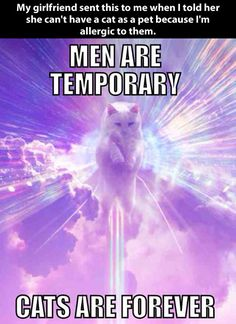 Cats vs. men…