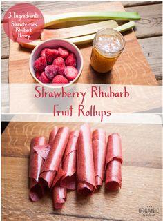 Strawberry Rhubarb Fruit Rollups (Healthy  Homemade) via This Organic Life