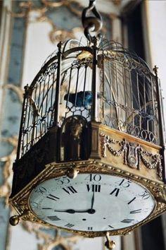 beautiful clock/birdcage