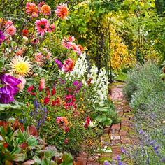 Photo: Mark Turner | thisoldhouse.com | from Vibrant Blooming Plants for a Late Summer Garden