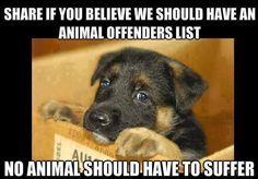 anim cruelti, offend list, animals, anim abus, pet, suffer, anim offend, dog, anim lover