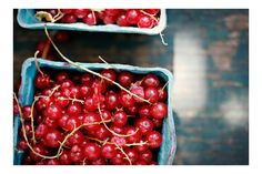 Sunday Suppers:: currants