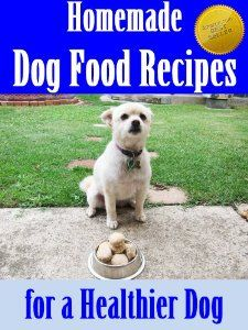 Homemade Dog Food Recipes for a Healthier Dog (Improved & Updated Dog Food Recipes) (Puppy and Dog Care Training at Home)
