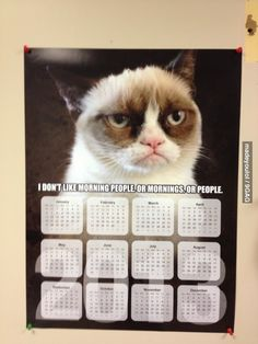 Saw this calendar at a vet clinic.