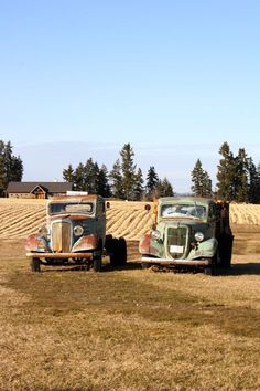 *Old farm trucks ... his and hers ...