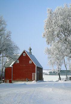 Red Barn In Winter Snow