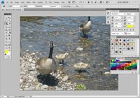 Photoshop I Lesson 1a - Rearranging and Saving Workspaces