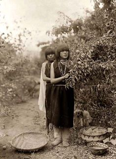 Indian Fruit Gatherers