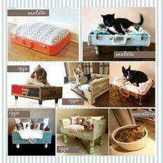 295232_475066595863553_1020265405_n.jpg 403×403 pixels de reciclar, cats, cat beds, anim, pet stuff, pets, pet idea, reciclar maleta, idea para
