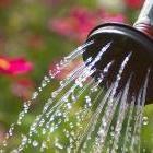 Tips on watering the garden.  TheTankFarm.org