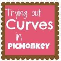 Great tutorial for How to Use Curves in Picmonkey. My pictures just got prettier!
