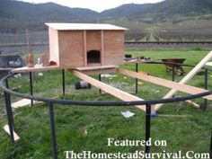 Chicken Coop Made From A Trampoline Frame – 5 Pictures