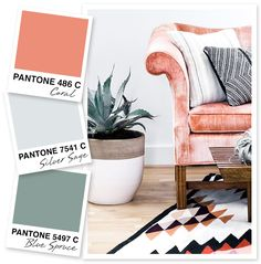 Sarah Hearts - Coral, Gray, and Blue Spruce Color Palette