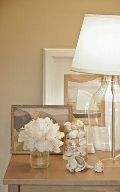 Seashells in glass vase.