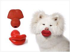 lips dog ball