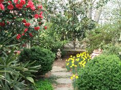 With the right plant choices you can create cozy areas surrounding a patio or other niche.